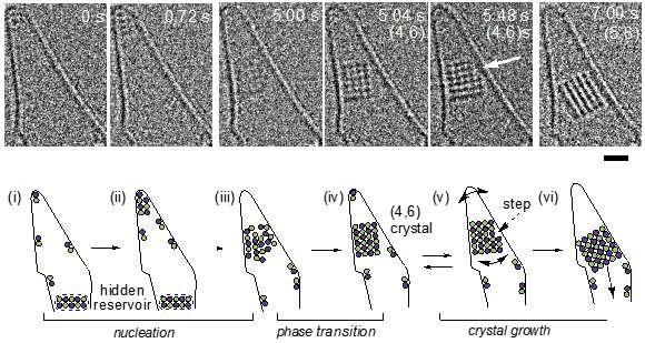 crystalclose